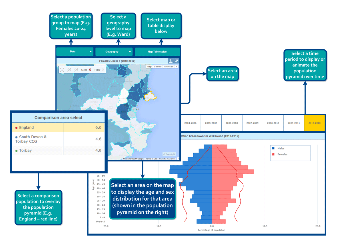 Population Tool Infographic